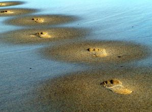 stock.xchng - Footprints (stock photo by jimhdesign)