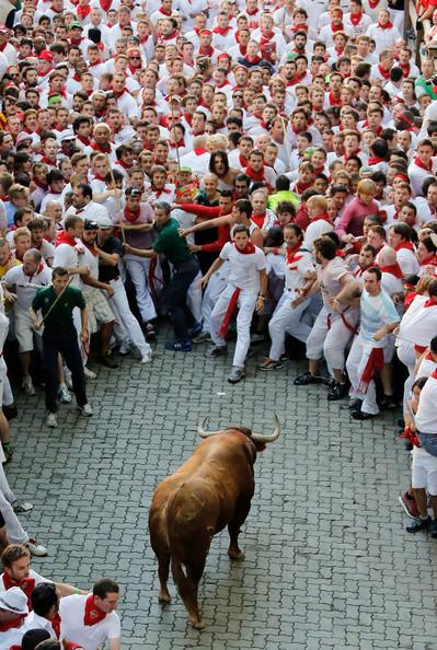 Fiesta De San Fermin Running Bulls
